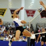 Best Volleyball Ankle Brace Reviews